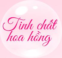 tinh-chat-hoa-hong